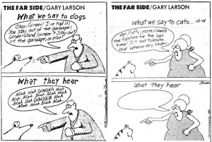 gary-larson-what-we-say-to-dogs-what-dogs-hear